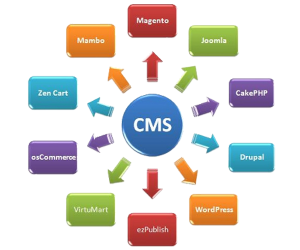 CMS Testing Services